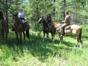 D & S Trails- Guided Horseback Trail Rides